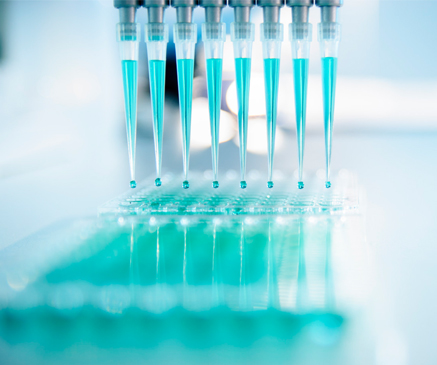 Genetics & Testing