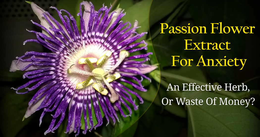 Passion Flower Extract As A Natural Anxiety Remedy