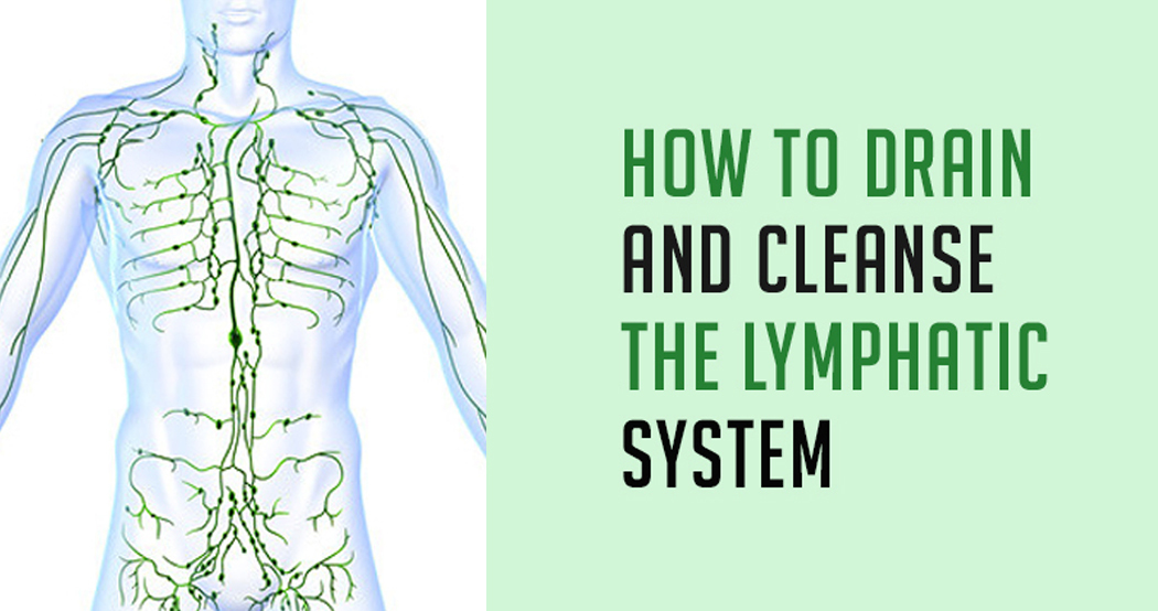 How To Drain And Cleanse The Lymphatic System Naturally